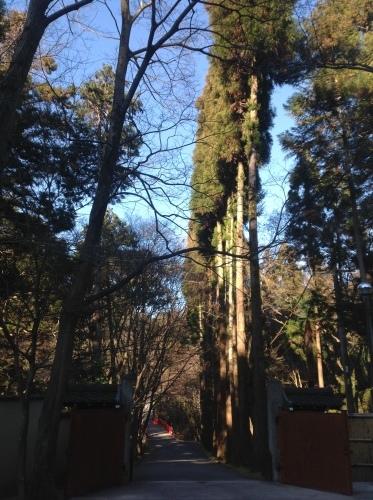 旧暦初詣は東山路にて_b0153663_00214621.jpeg
