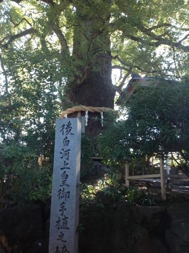 旧暦初詣は東山路にて_b0153663_01045588.jpeg