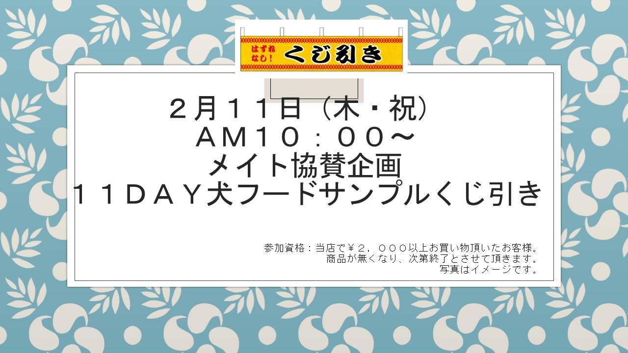 160209 イベント告知_e0181866_1362693.jpg