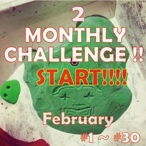 MONTHLY CHALLENGE 2月_d0246875_15484172.jpg
