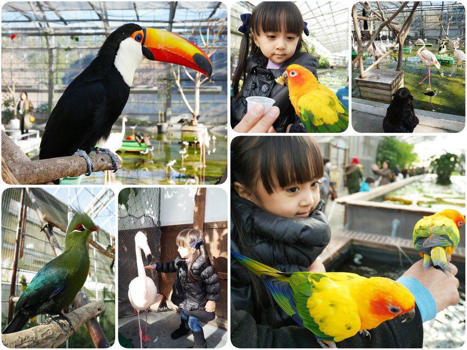 家族5人で静岡へ(祖母のお見舞い)_d0224894_10181273.jpg