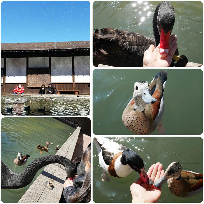 家族5人で静岡へ(祖母のお見舞い)_d0224894_10181483.jpg