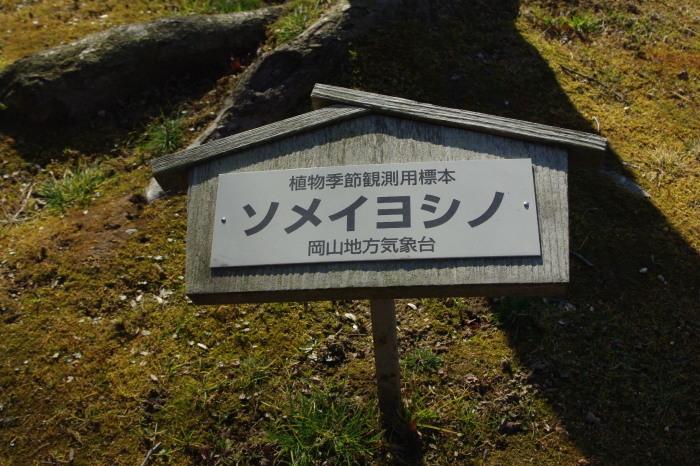No 25 ぶらり後楽園_d0341514_20260186.jpg