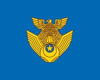 航空自衛隊機。_b0044115_8303991.jpg