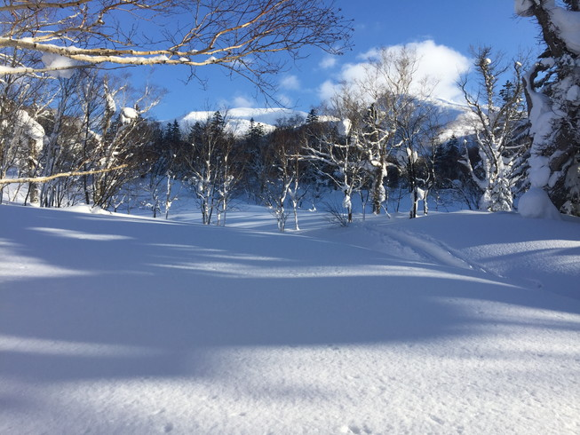 "2016年2月『余市岳のさらに奥へ』 February 2016 ""Secret powder in Mt Yoichi\""_c0219616_18115195.jpg"