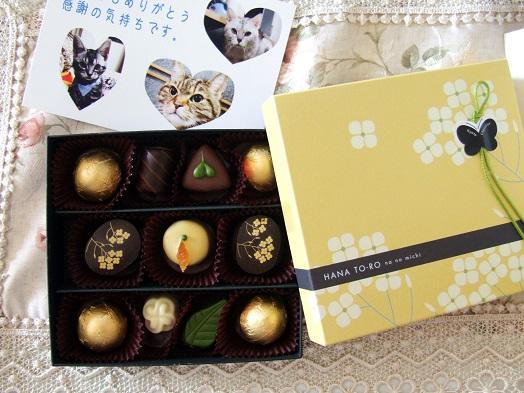 チョコレートをいただきました。_b0089338_20285923.jpg