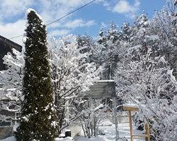 気持ちのよい雪景色。_d0050155_09260907.jpg