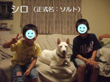 あんこちゃん 新生活スタート!_f0242002_221827.jpg
