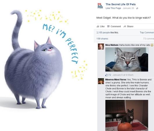 そっくりペット写真大会?!になりつつある映画「The Secret Life of Pets」のFacebook_b0007805_2174559.jpg
