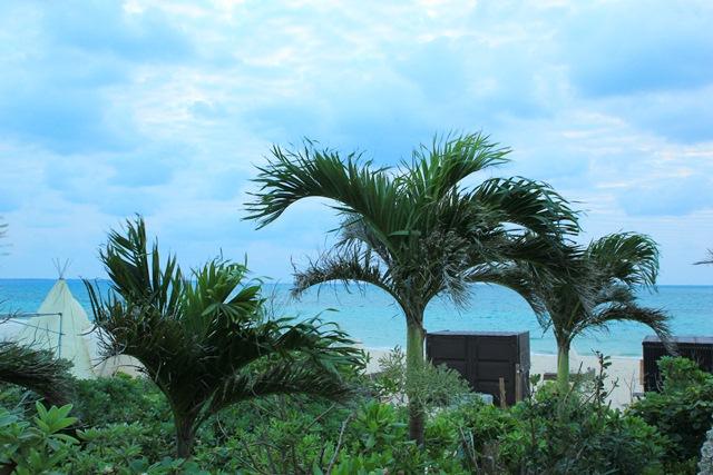 八重山諸島での夢のような4日間(*˘︶˘*).。.:*♡_a0213806_22205214.jpg