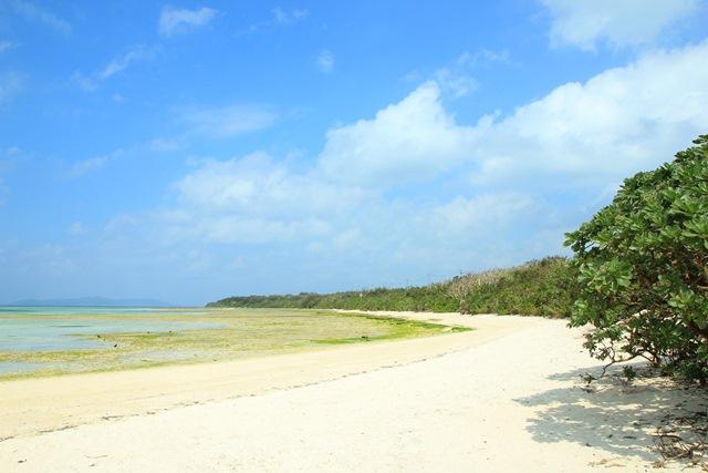 八重山諸島での夢のような4日間(*˘︶˘*).。.:*♡_a0213806_2234153.jpg