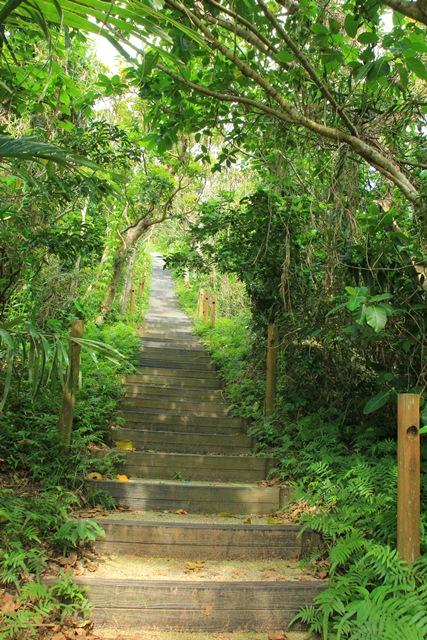 八重山諸島での夢のような4日間(*˘︶˘*).。.:*♡_a0213806_23105346.jpg