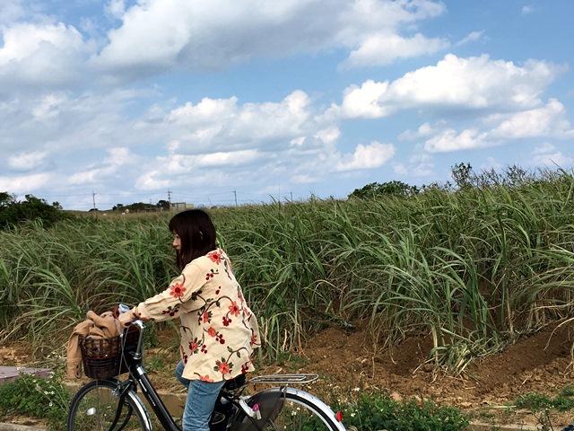 八重山諸島での夢のような4日間(*˘︶˘*).。.:*♡_a0213806_23115971.jpg