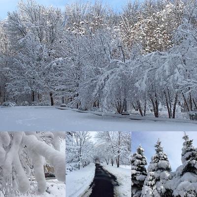 冬はやっぱり、_d0050616_9203399.jpg