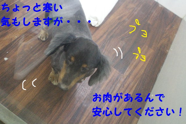 b0130018_23561327.jpg