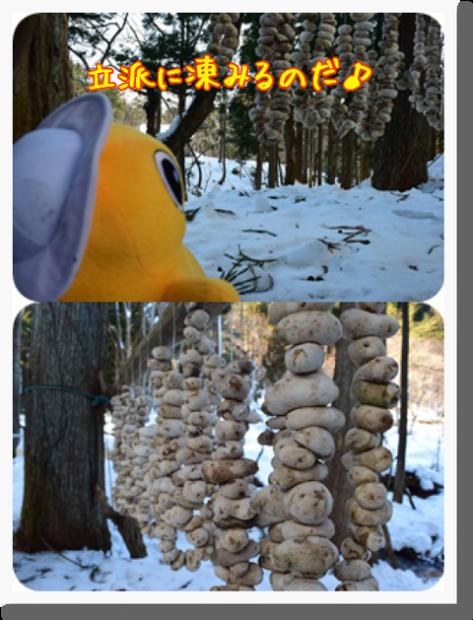 野田村でアンデス地方の食との繋がりを感じたのだ♪_c0259934_14402672.png