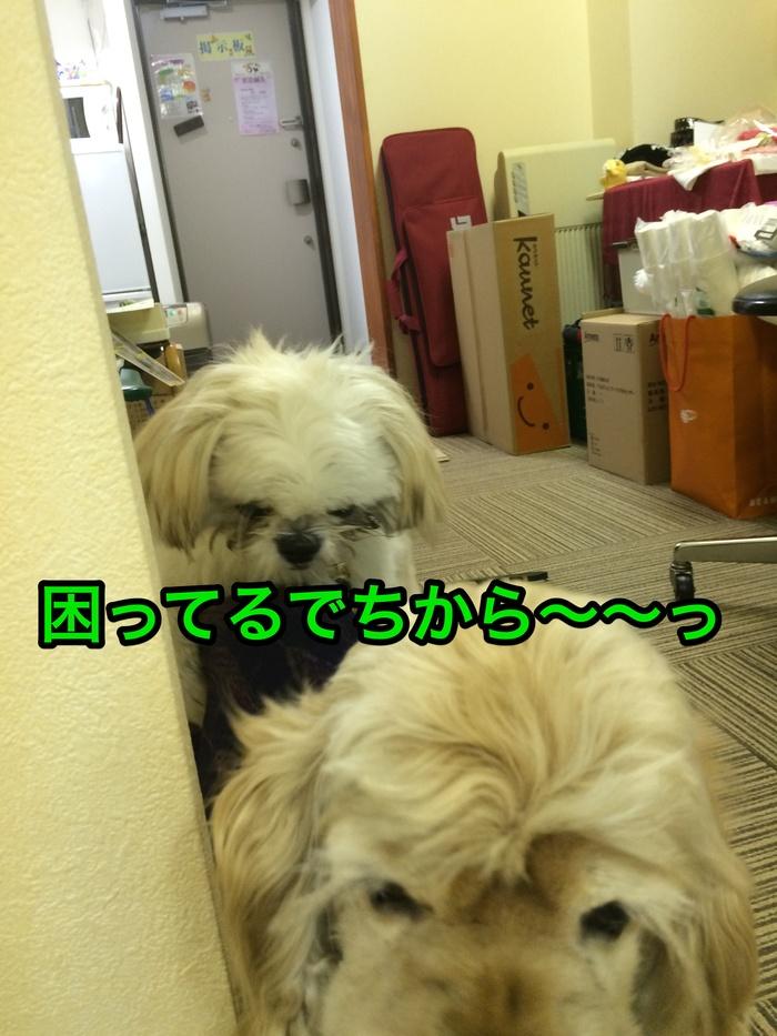b0067012_2304313.jpg