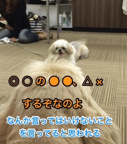 b0067012_2315142.jpg