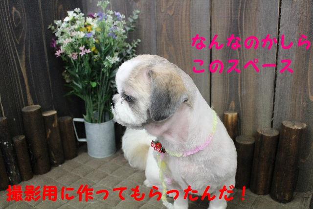 バレンタイン♪_b0130018_01487.jpg