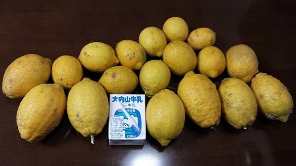 檸檬 レモン LEMON_f0129726_19442854.jpg