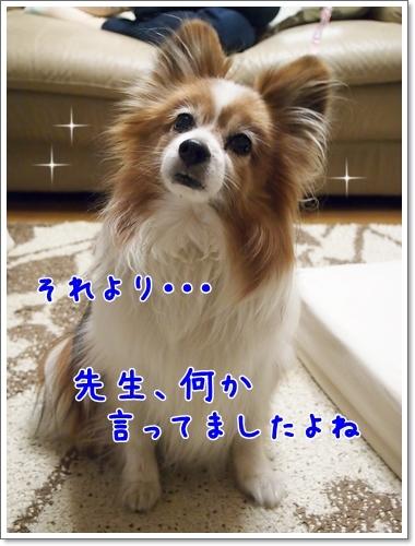 d0013149_00153622.jpg