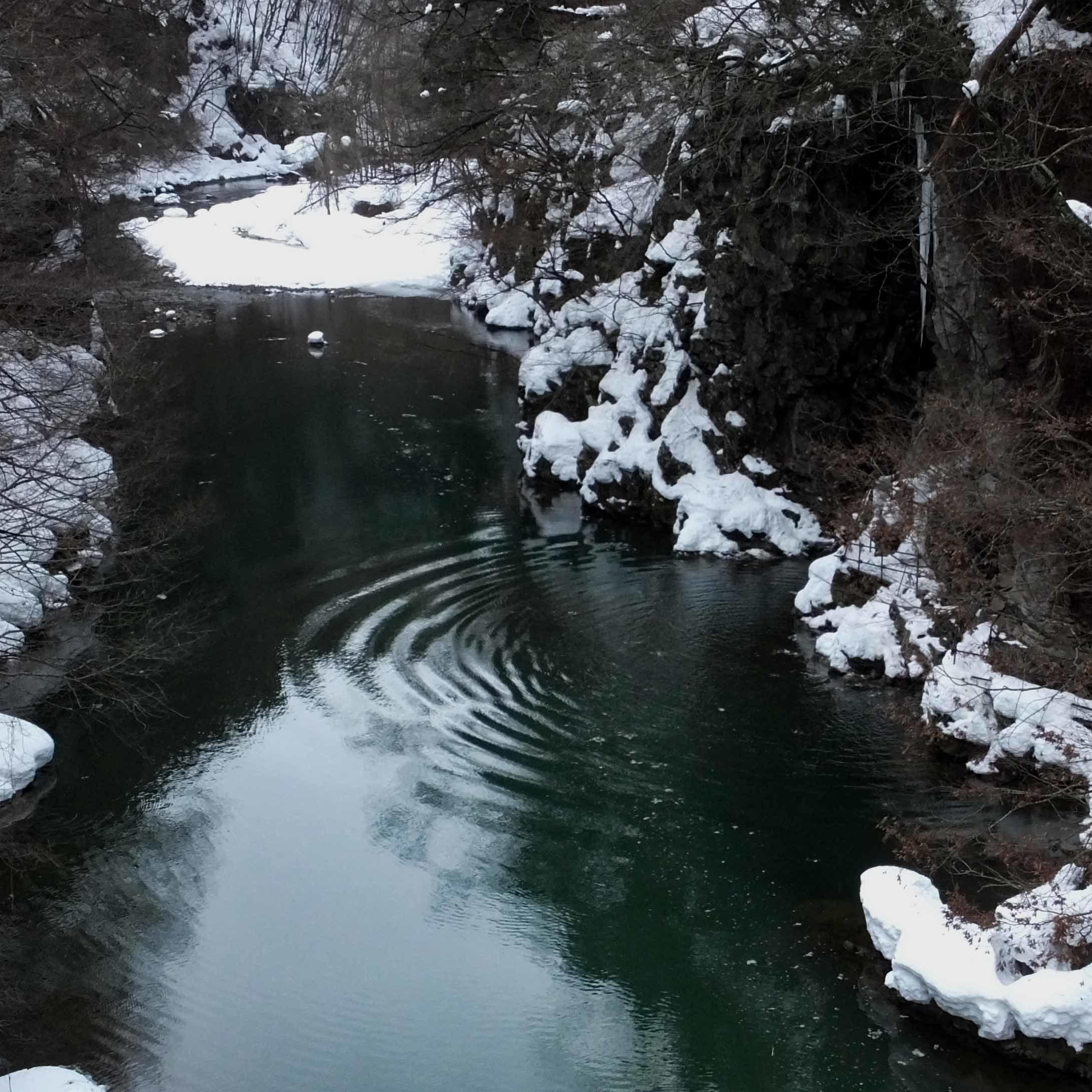 暖冬2題_e0220159_16333709.jpg