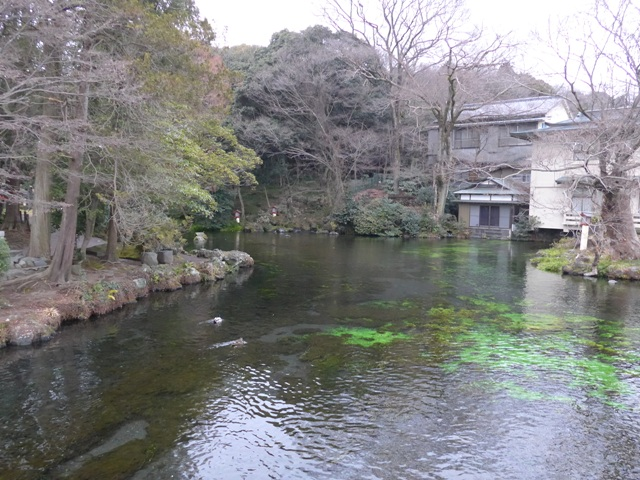 富士山本宮浅間大社と白糸の滝がすごかった話_f0232060_21441223.jpg
