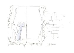 猫せを運んでくるかぎしっぽの猫_f0325471_19555010.jpg