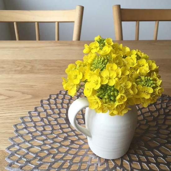 小さな春の訪れ_c0293787_15411943.jpg