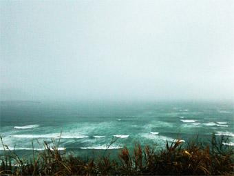 今朝の激しい風と雨_c0195909_10202026.jpg