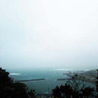今朝の激しい風と雨_c0195909_10203062.jpg