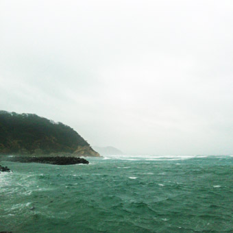今朝の激しい風と雨_c0195909_10203960.jpg