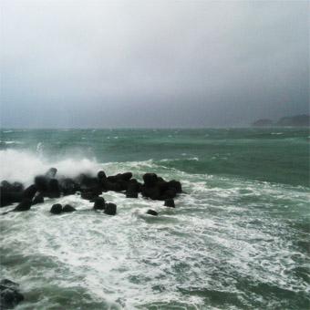 今朝の激しい風と雨_c0195909_10204534.jpg