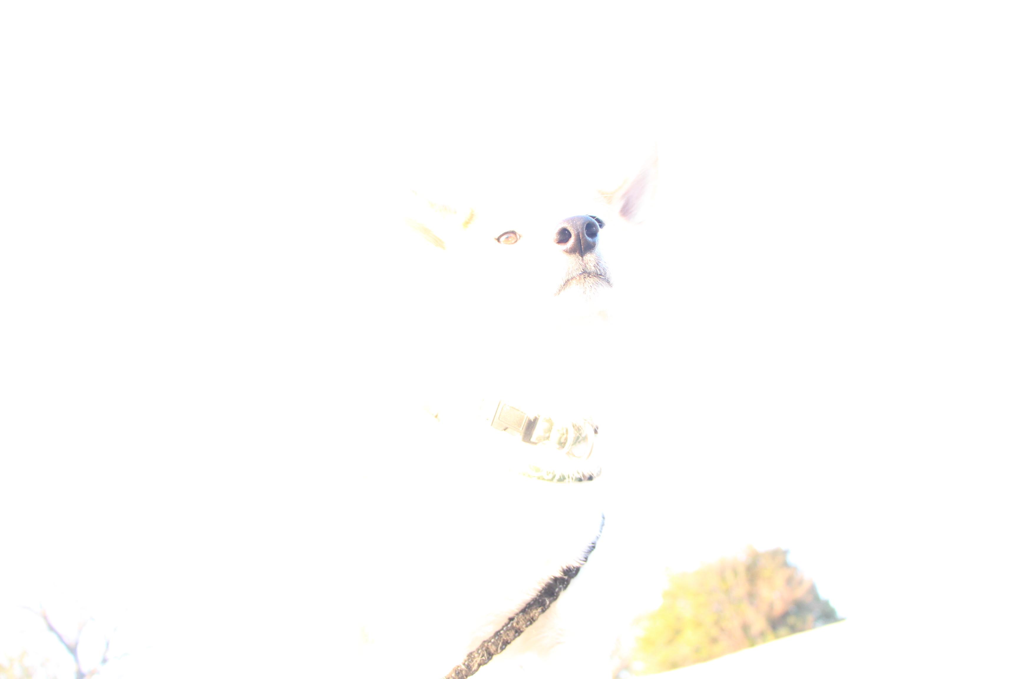 f0245650_08034587.jpg