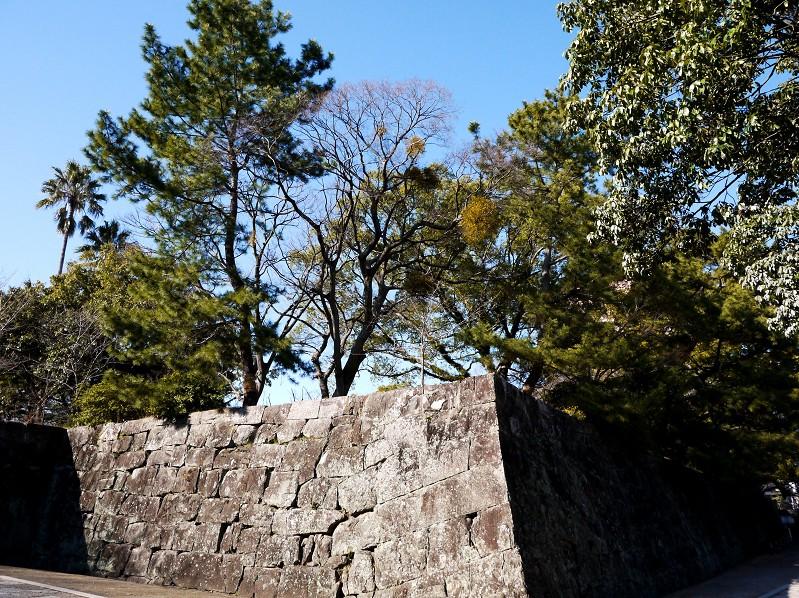 和歌山城公園にて_b0093754_2010048.jpg