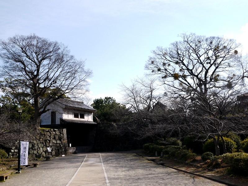和歌山城公園にて_b0093754_20122611.jpg