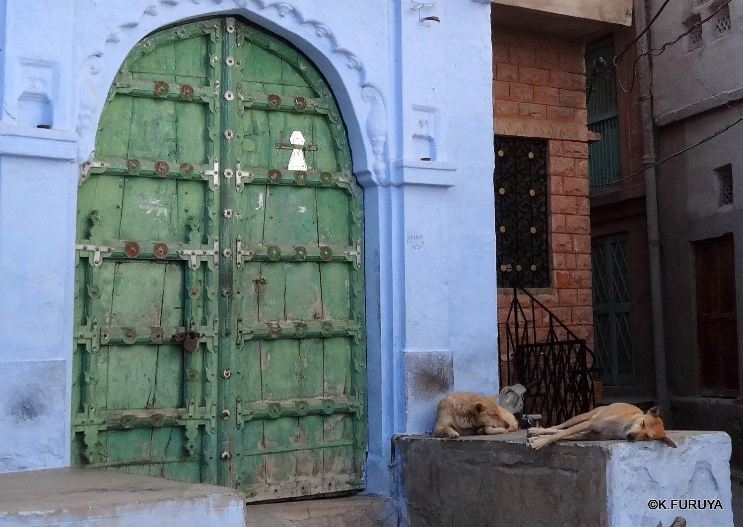 インド・ラジャスタンの旅 7 ブルーシティ_a0092659_18573390.jpg