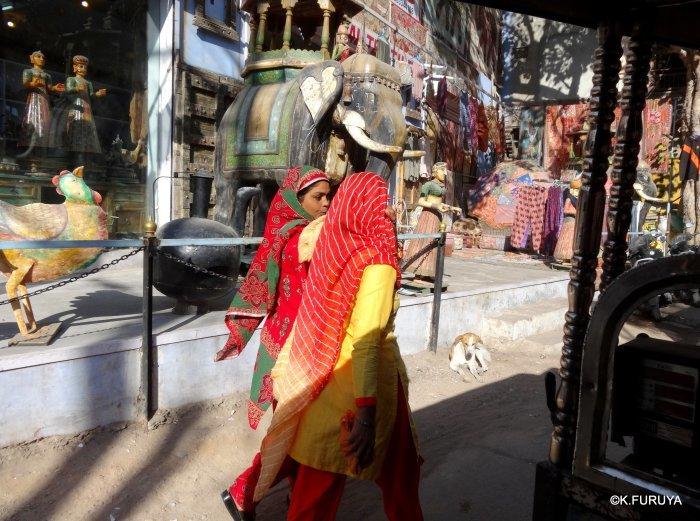 インド・ラジャスタンの旅 7 ブルーシティ_a0092659_19021637.jpg