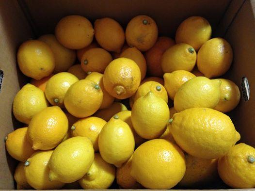 新じゃがとタコのレモンサラダ_d0122797_924873.jpg