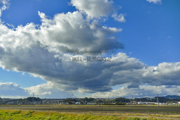 流れ込む雪雲。_f0235723_19182224.jpg