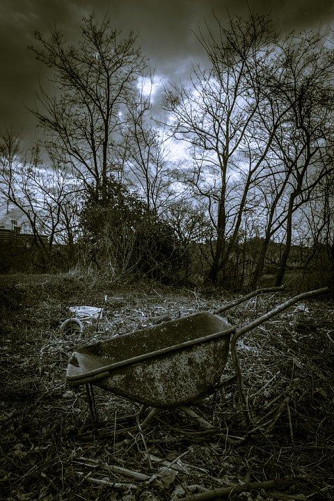 哲学的な気分になれる冬の散歩道_d0353489_2038147.jpg