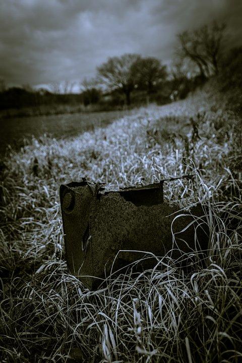 哲学的な気分になれる冬の散歩道_d0353489_2040628.jpg