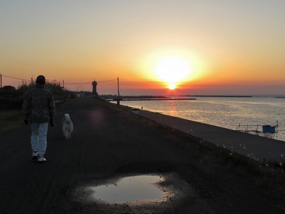 朝の海 (*^_^*)_c0049299_22162596.jpg