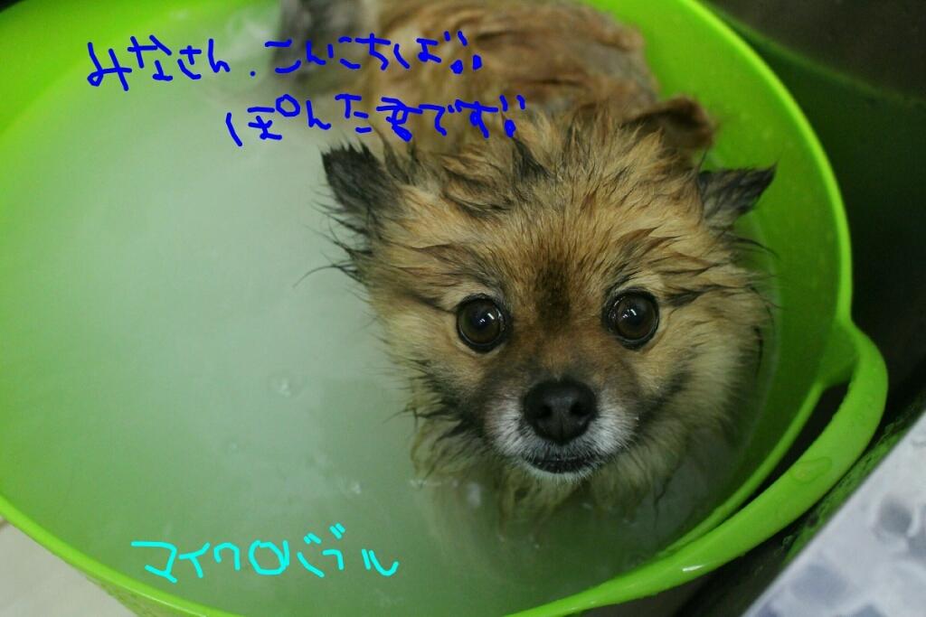 b0130018_17510716.jpg