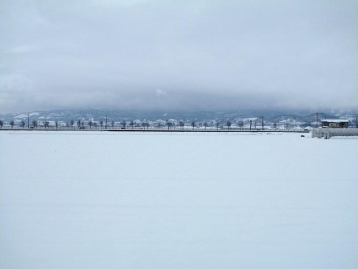 冬景色の思い出_d0150720_2057251.jpg