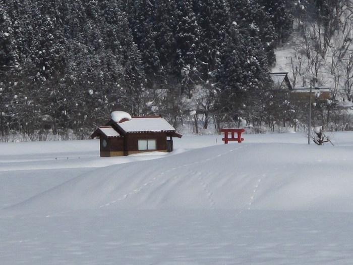 冬景色の思い出_d0150720_20581086.jpg
