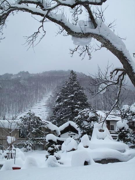 冬景色の思い出_d0150720_210448.jpg