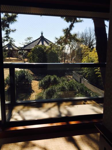 奈良の登大路ホテルに行ってきました!@お部屋編_f0215324_21004689.jpg