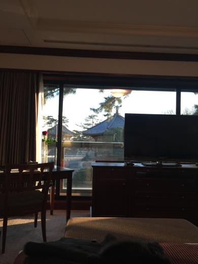 奈良の登大路ホテルに行ってきました!@お部屋編_f0215324_21004777.jpg