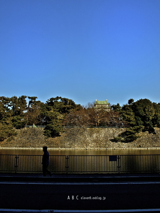 Nagoya  castle_f0315034_15553207.jpg